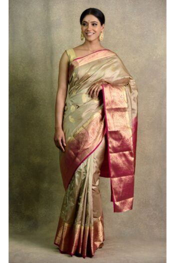 latest Chiku Magenta Saree | Surya Sarees | House of surya | chandni chowk | Old Delhi
